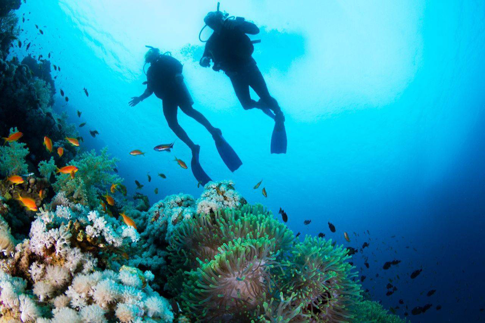 People-scuba-diving